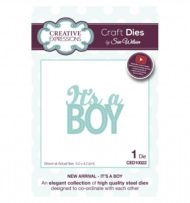Creative Expressions - by Sue Wilson -  It's a boy (CED10022)