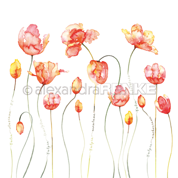 "Happymade - Alexandra Renke - 12x12"" - Many Tulips Red Orange - 10.847"